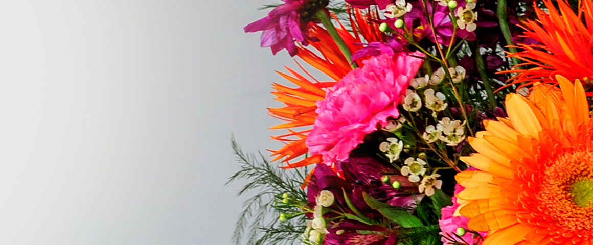 Mary Margaret's Flowers